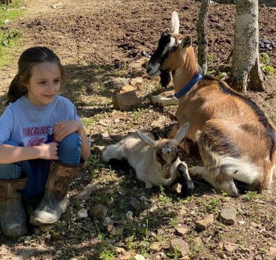 Dairy Goats for the Farm
