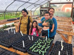 Incubator farm project participant in greenhouse